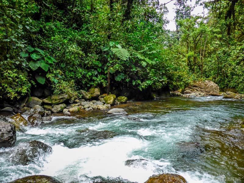 promenade-riviere-tout-equateur