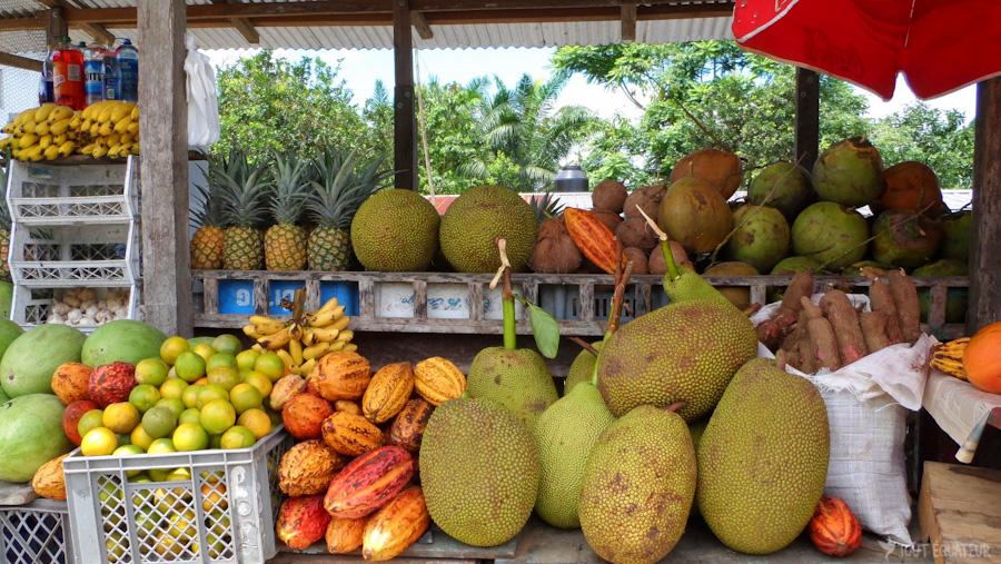 18-fruits-tropicaux-tout-équateur