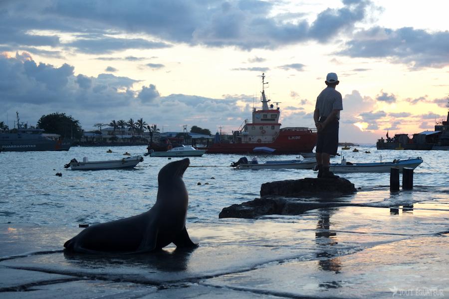port-galapagos-tout-équateur