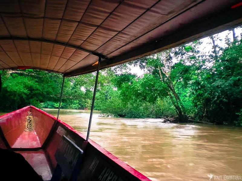 article-visiter-amazonie-tout-equateur-7