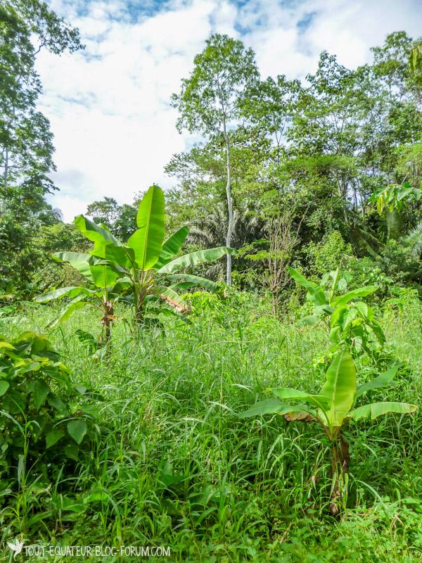 blog-voyage-communauté-tout-equateur-3