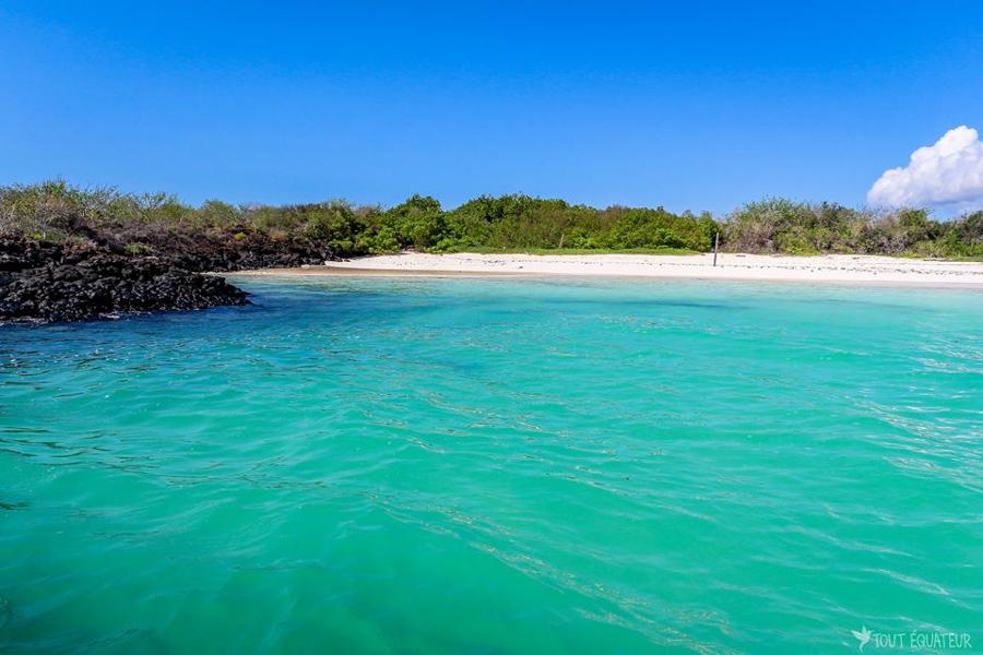 Aller-aux-Galápagos-tout-equateur (2 of 8)