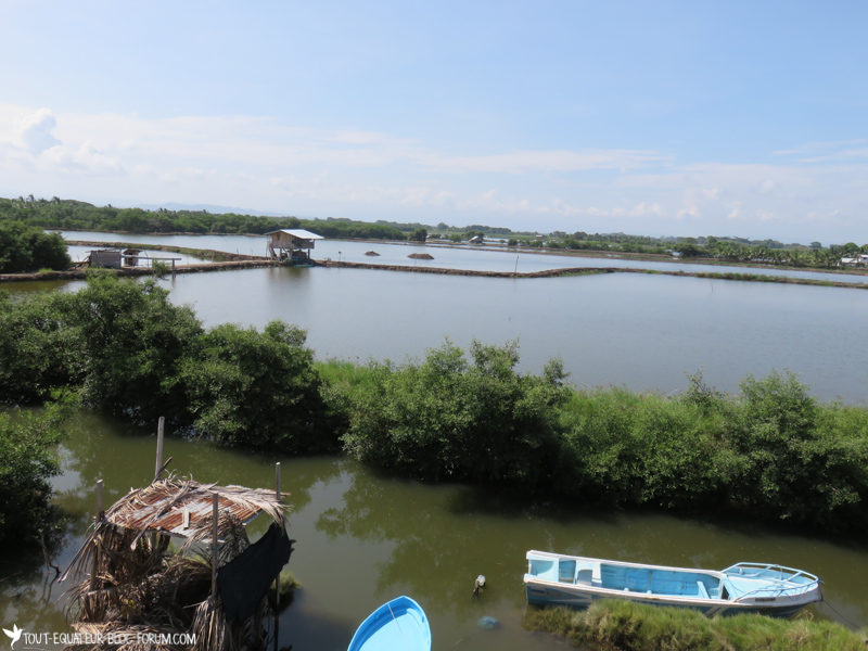 blog-Cojimes-tout-equateur (1 of 12)