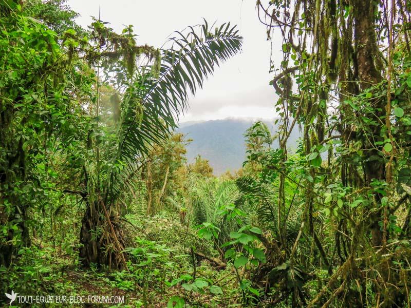 blog-marche-otavalo-tout-equateur-25
