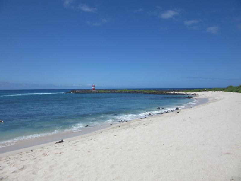 blog-galapagos2-tout-equateur (3 of 5)
