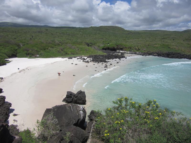 blog-galapagos2-tout-equateur (5 of 5)