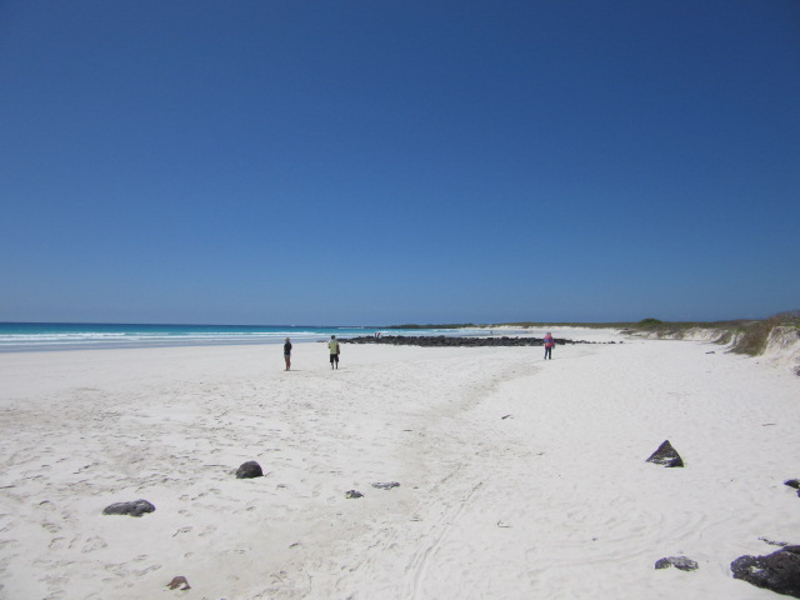 blog-galapagos3-tout-equateur (1 of 7)