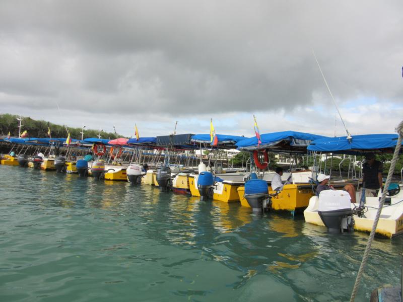 blog-galapagos3-tout-equateur (4 of 7)