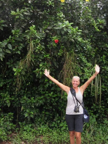 blog-galapagos3-tout-equateur (7 of 7)