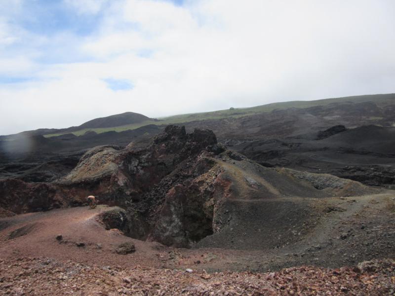 blog-galapagos4-tout-equateur (4 of 5)