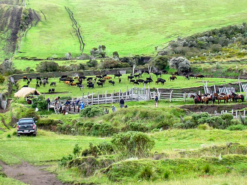 itineraire-Equateur-Bruno-tout-equateur (2 of 25)