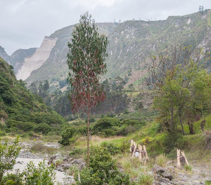 blog-Isinlivi-Nicolas-tout-equateur (6 of 21)