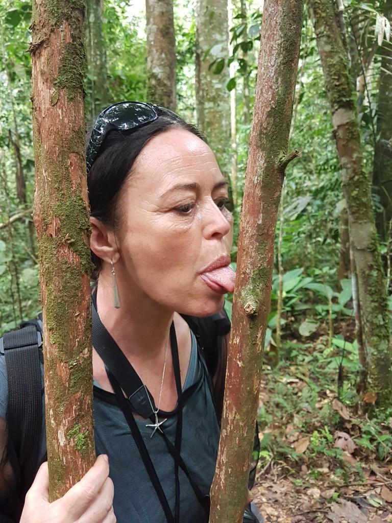 Guacamayo Cuyabeno Amazonie - Valerie Florval (1)