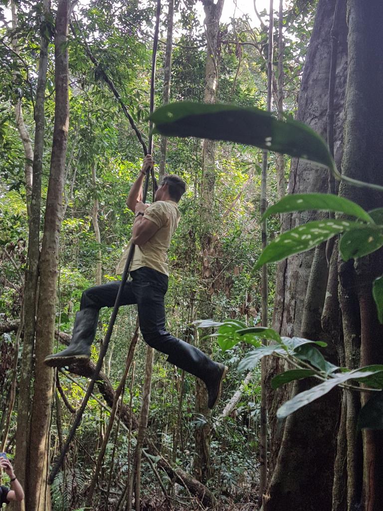Guacamayo Cuyabeno Amazonie - Valerie Florval (10)