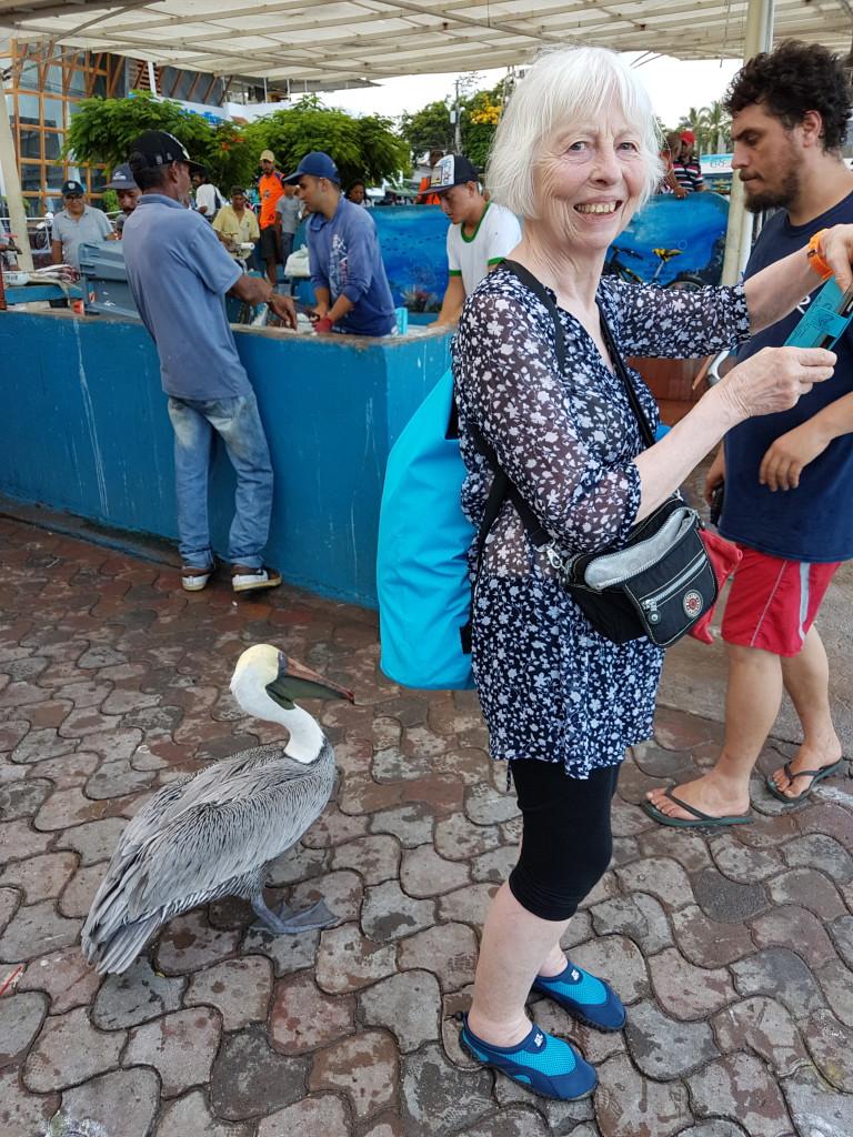 Santa Cruz Puerto Ayora Galapagos - Valerie Florval