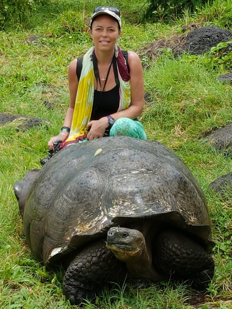 Santa Cruz Tortue Galapagos - Valerie Florval