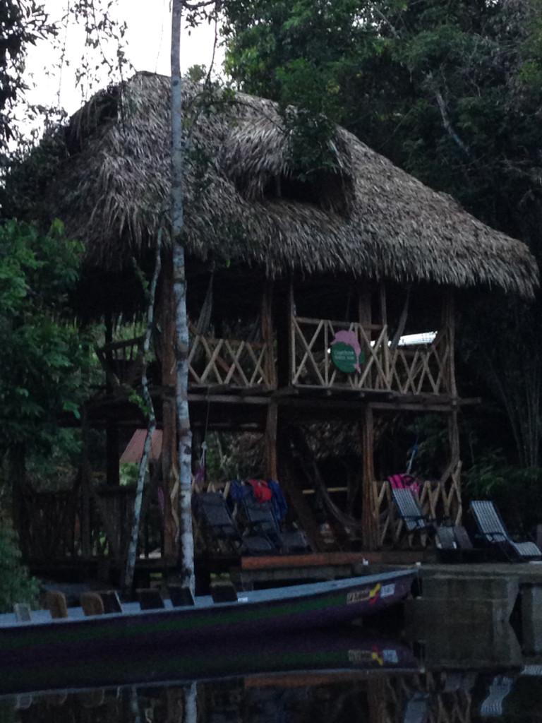 Amazonie - Naud 13