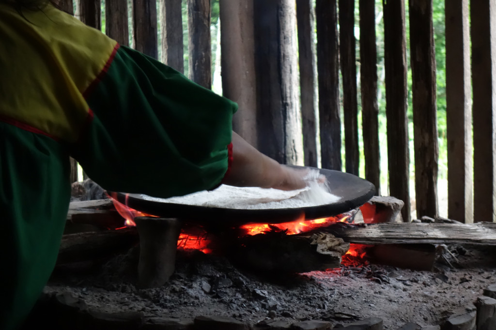 Amazonie - Naud 32