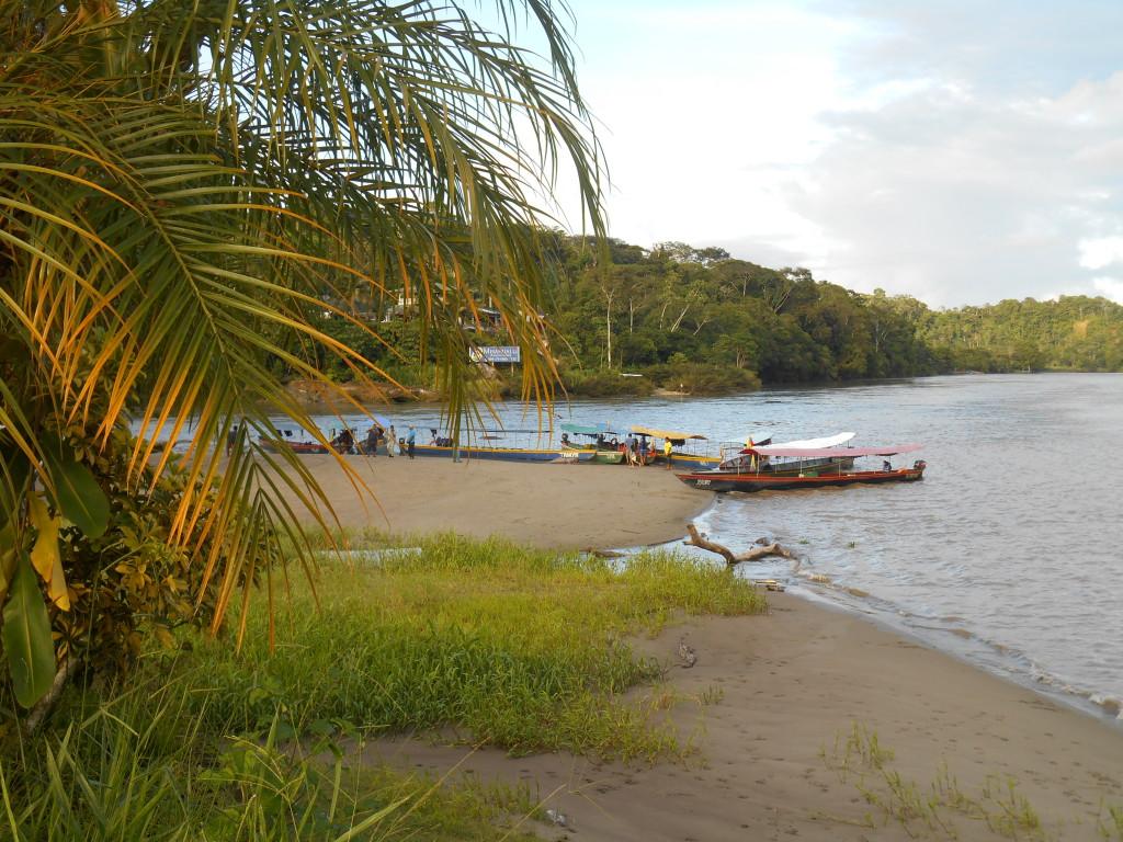 20170505 0737 Puerto Misahualli - Plage du fleuve