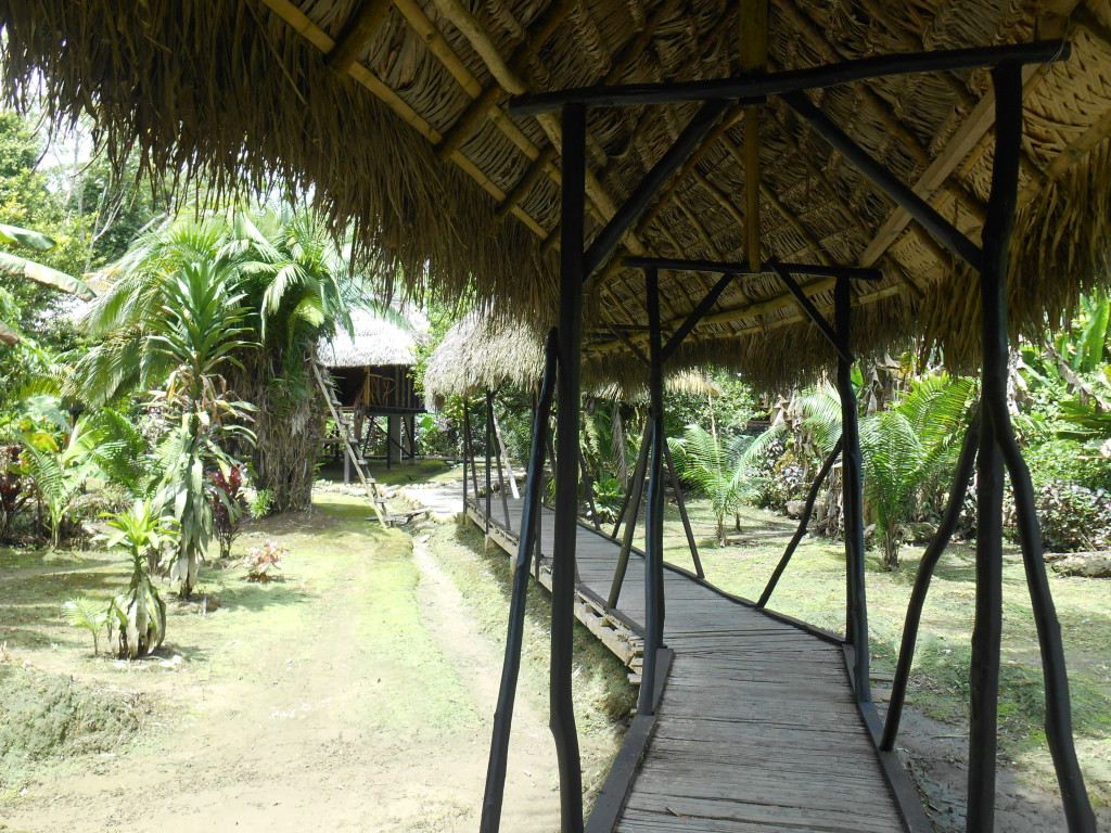 20170506 0863 Puerto Misahualli - Jungle Lodge