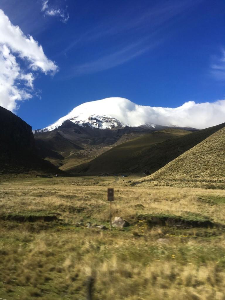 Bouvier Chimborazo 1