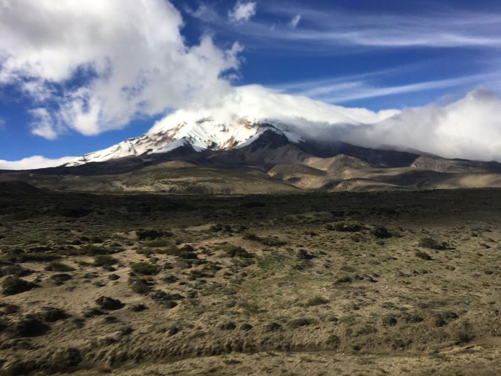 Bouvier Chimborazo 2
