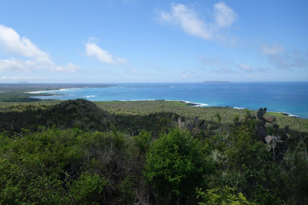 Galapagos Naud 12