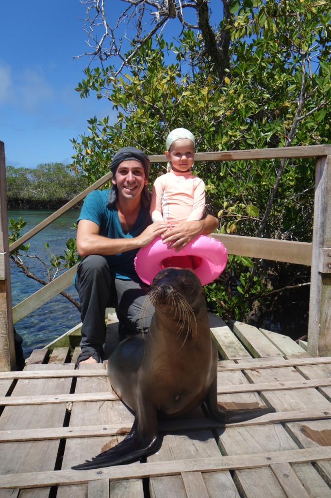 Galapagos Naud 4