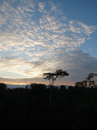 Amazonie 2 - Laurence et Patrice
