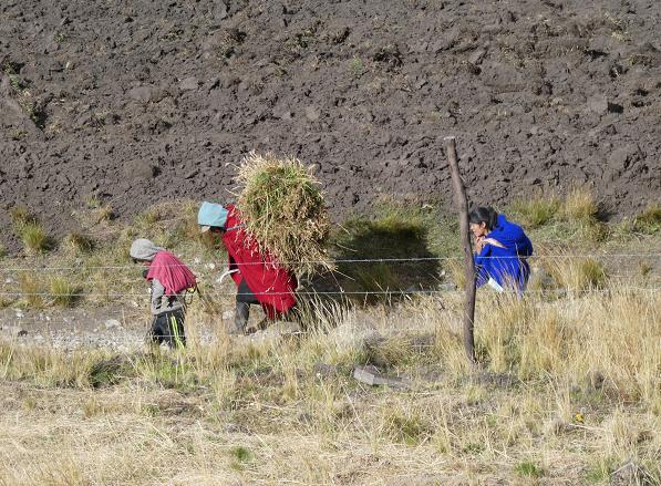 Andes 2 - Basuyau