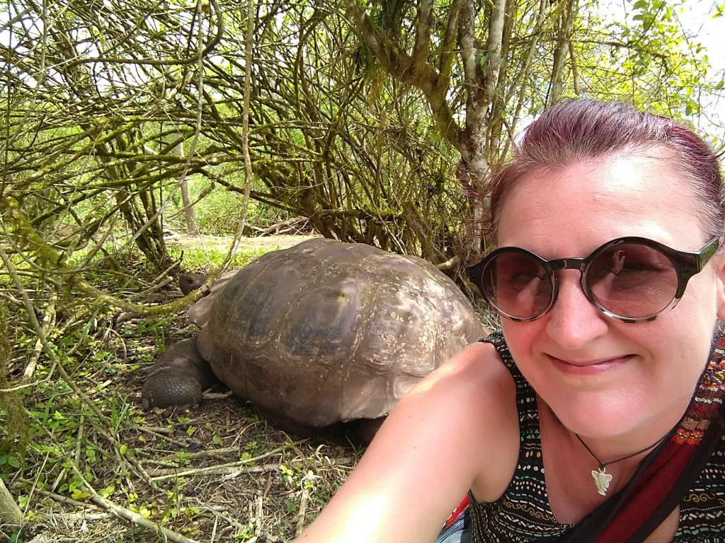 Mélanie Thiess - Galapagos Tortue géante
