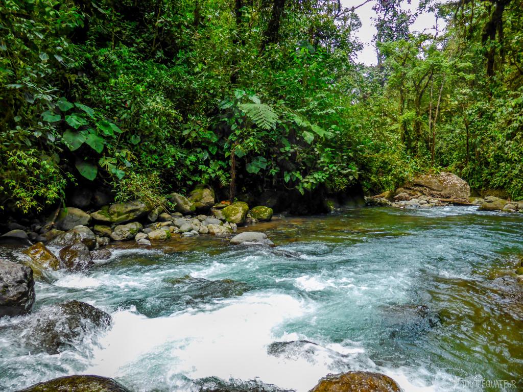 riviere-mindo-tout-equateur