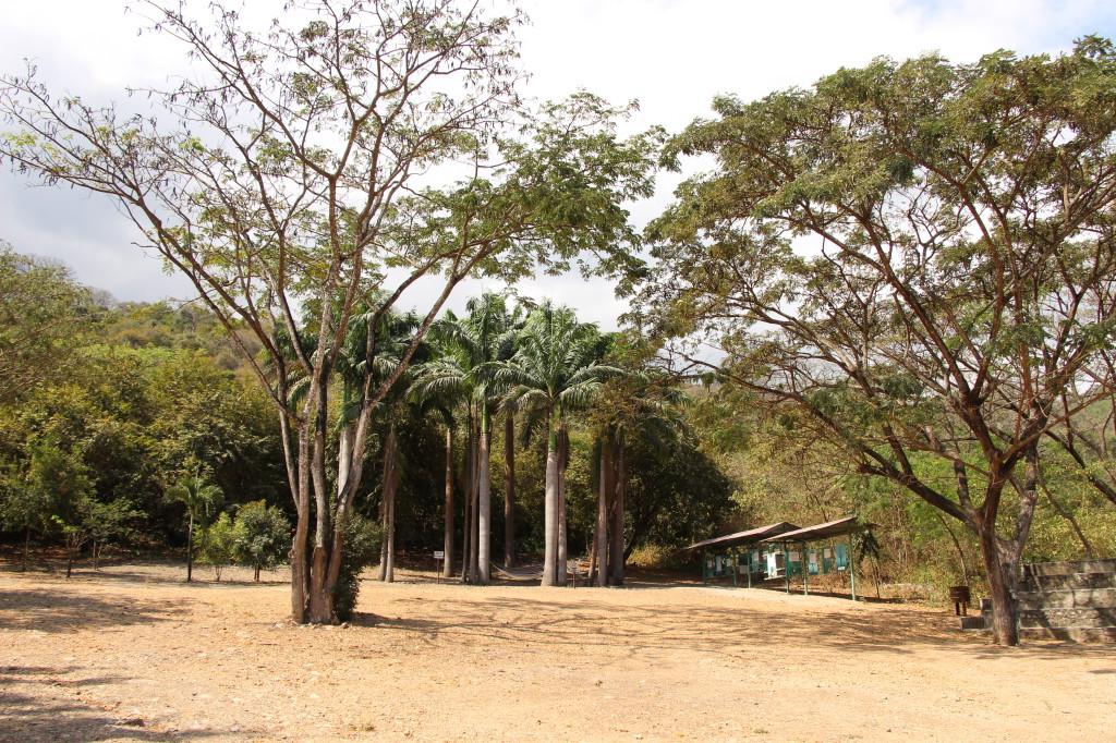 bosque-del-cerro-blanco_27915515048_o