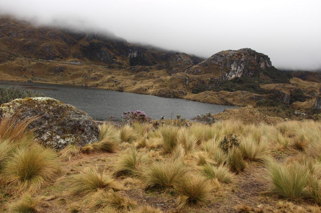 equateur_2017-09-30-109_27915538788_o