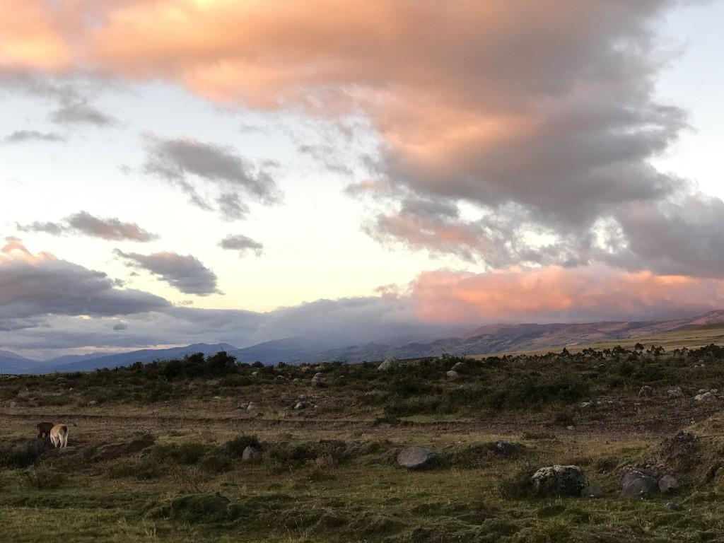 Equateur 02 COTOPAXI (12)