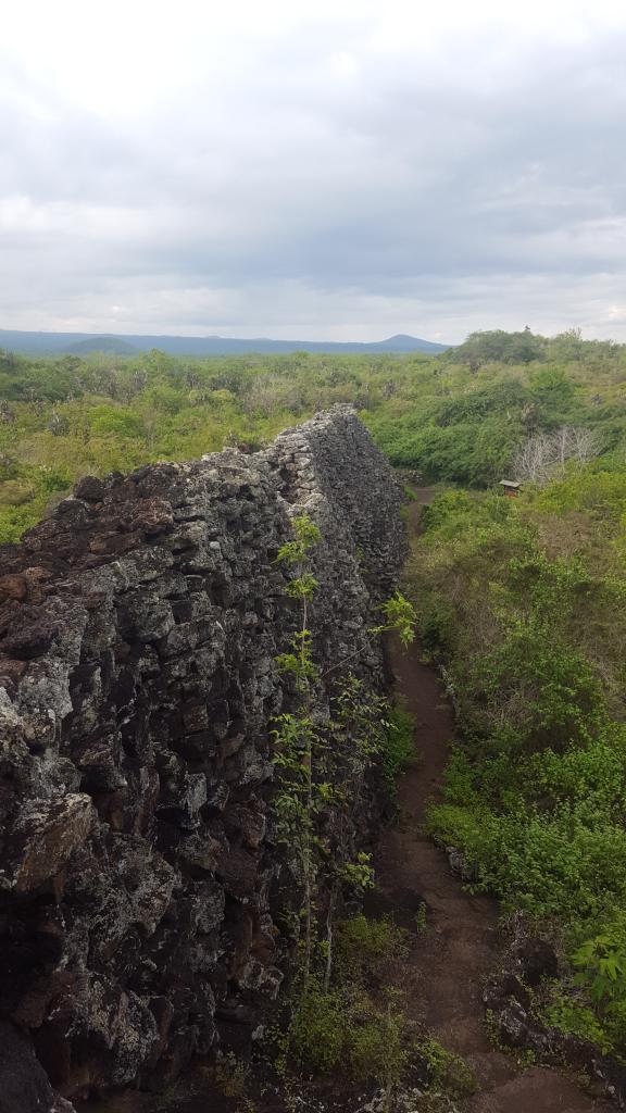 muro lagrimas 2