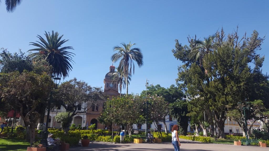 plaza ibarra