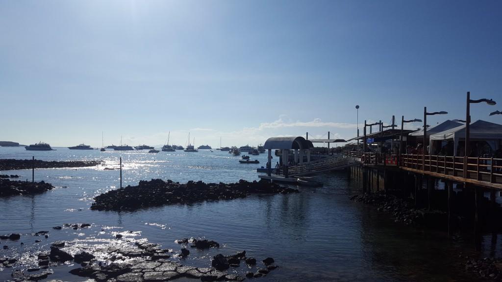 puerto isabela