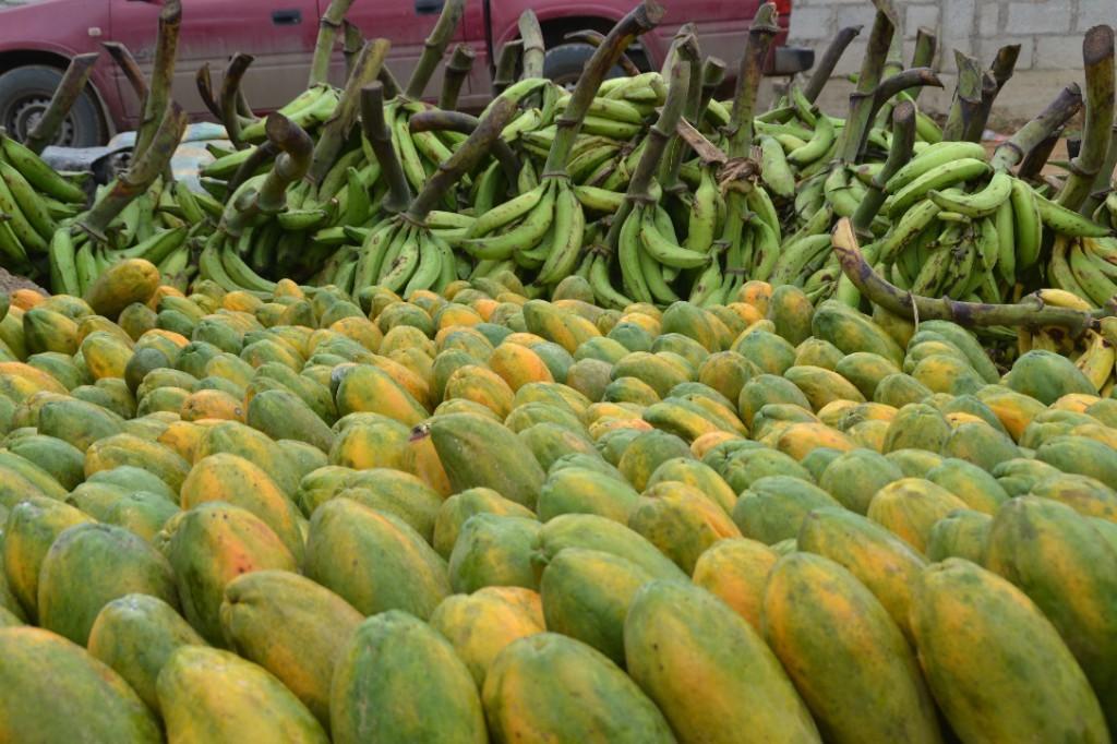 20 fruits marchés