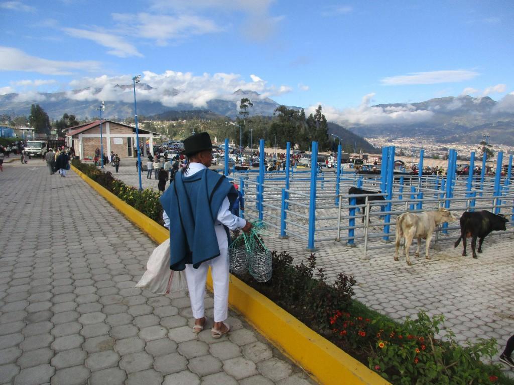 37 Otavalo
